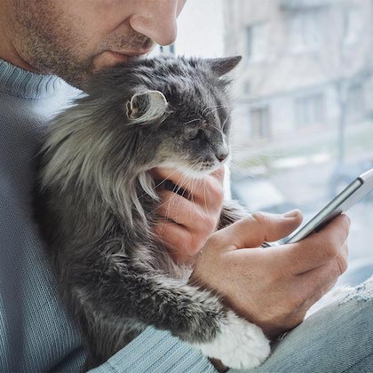 Homme chat mobile